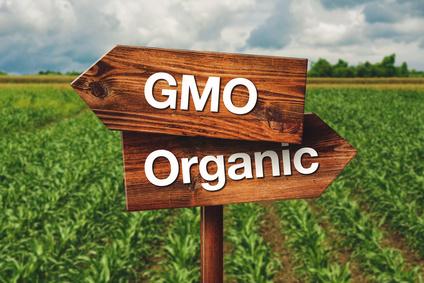 No. 41 ストップGMO!遺伝子組み換え食品の影響